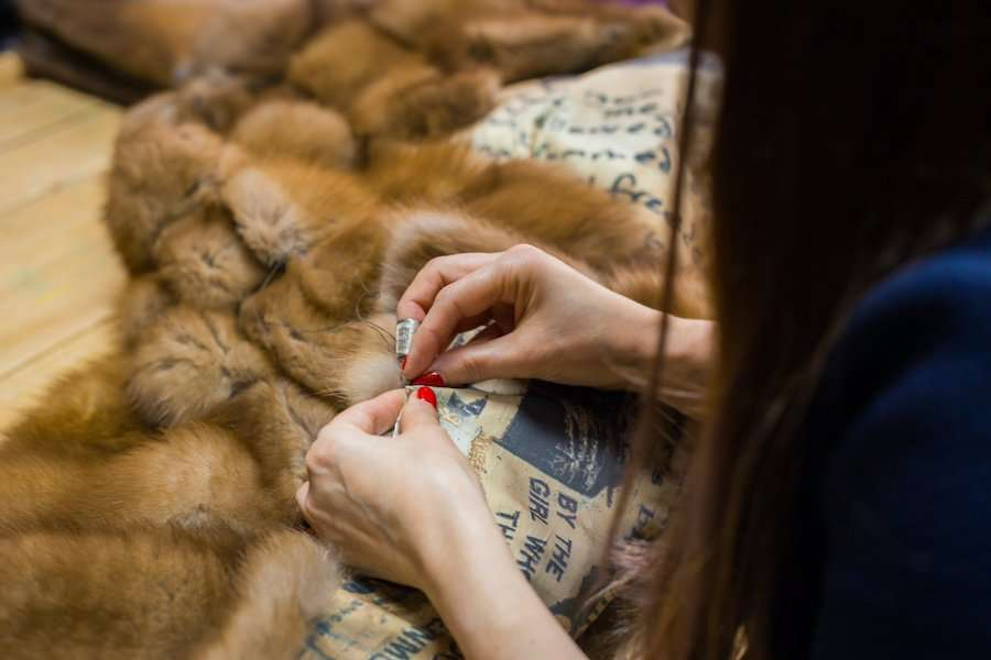 Professional tailor, designer repairing fur coat at atelier, studio. Fashion and tailoring concept
